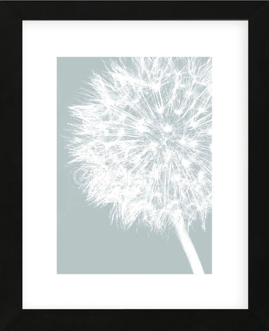 Dandelion Crop (blue)  (Framed) -  Jenny Kraft - McGaw Graphics