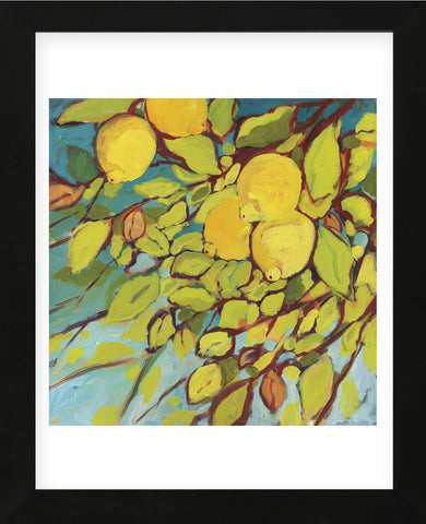 The Lemons Above (Framed) -  Jennifer Lommers - McGaw Graphics