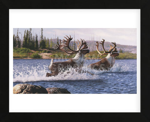 Caribou Crossing (Framed) -  Rod Lawrence - McGaw Graphics