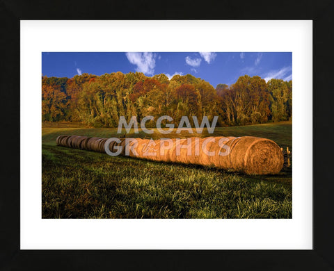 Hay Bales (Framed) -  Robert Lott - McGaw Graphics