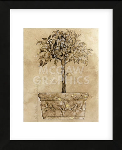 Victorian Topiary  (Framed) -  Pyper Morgan - McGaw Graphics