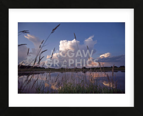 Midsummer Reflections  (Framed) -  Phillip Mueller - McGaw Graphics
