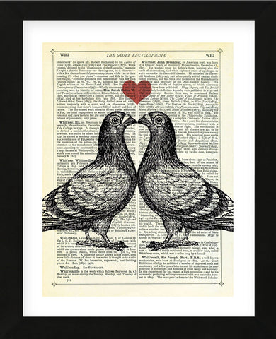 Pigeons in Love (Framed) -  Marion McConaghie - McGaw Graphics
