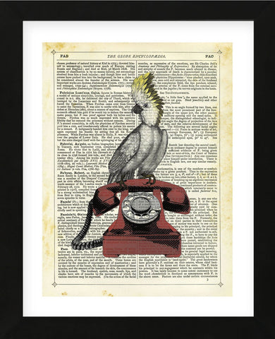 Cocatoo on Telephone (Framed) -  Marion McConaghie - McGaw Graphics