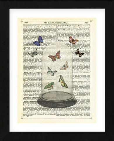 Butterfly Dome (Framed) -  Marion McConaghie - McGaw Graphics
