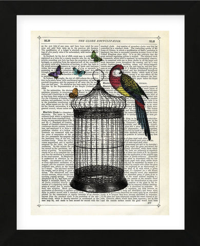 Bird Cage and Parrot (Framed) -  Marion McConaghie - McGaw Graphics