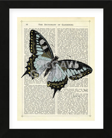 Angled Butterfly (Framed) -  Marion McConaghie - McGaw Graphics