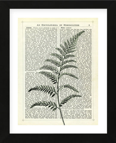 Fern 2 (Framed) -  Marion McConaghie - McGaw Graphics