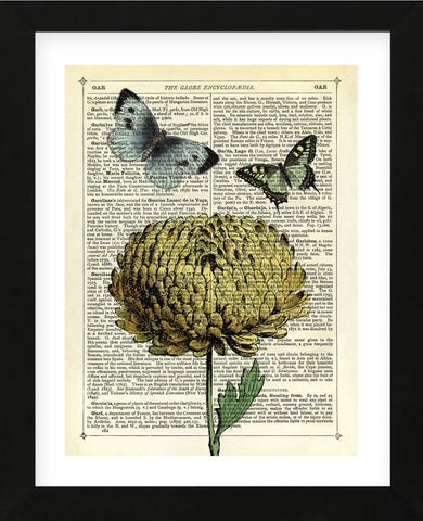Flower & Butterflies (Framed) -  Marion McConaghie - McGaw Graphics