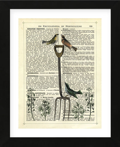 Garden Fork & Birds (Framed) -  Marion McConaghie - McGaw Graphics