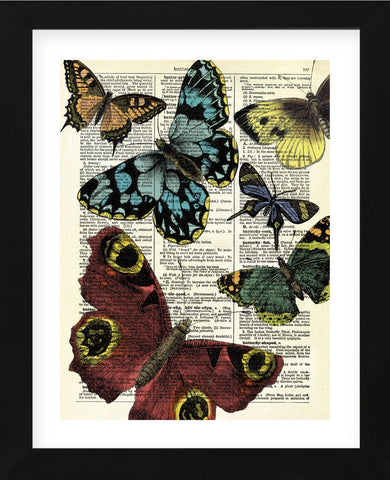 Selection of Butterflies (Framed) -  Marion McConaghie - McGaw Graphics
