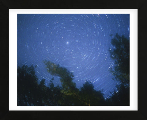 Starry, Starry Night (Framed) -  Orah Moore - McGaw Graphics