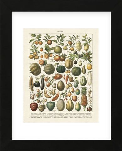 Fruits I (Framed) -  Adolphe Millot - McGaw Graphics