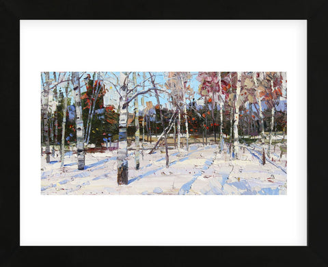 Best of Winter (Framed) -  Robert Moore - McGaw Graphics