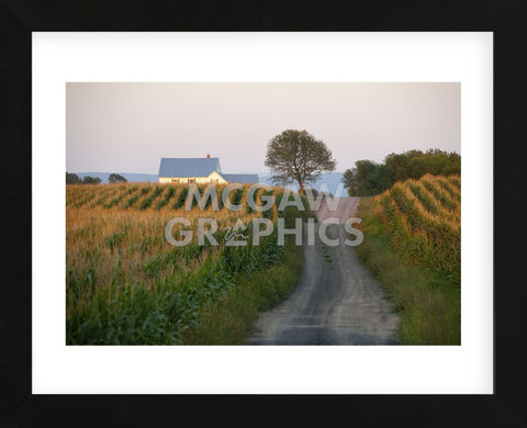 Going Places (Framed) -  Orah Moore - McGaw Graphics