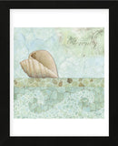 Spa Shells I (Framed) -  NBL Studio - McGaw Graphics