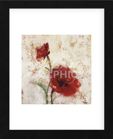Simply Floral II (Framed) -  Tim O'Toole - McGaw Graphics