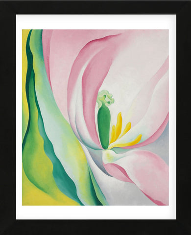 Pink Tulip, 1926 (Framed) -  Georgia O'Keeffe - McGaw Graphics