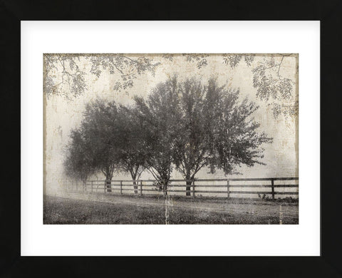 Morning Shades I (Framed) -  Pela + Silverman - McGaw Graphics