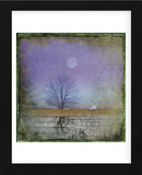 Moonlight in Vermont (Framed) -  Dawne Polis - McGaw Graphics
