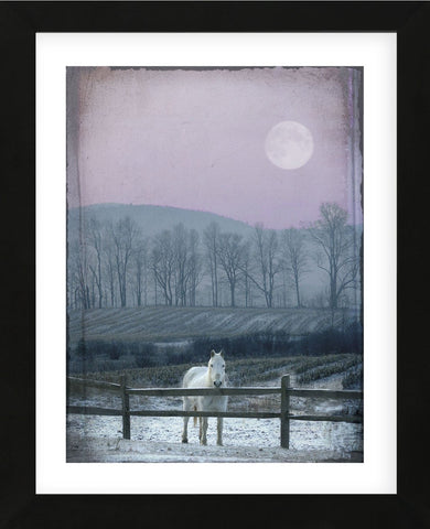 Prissy On Snowy Night (Framed) -  Dawne Polis - McGaw Graphics