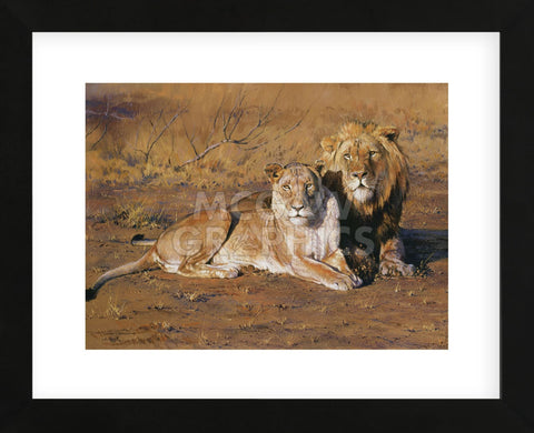 Courting Couple (Framed) -  Dino Paravano - McGaw Graphics