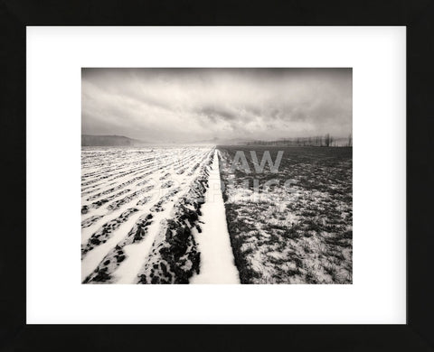 Stormy Field  (Framed) -  Andrew Ren - McGaw Graphics