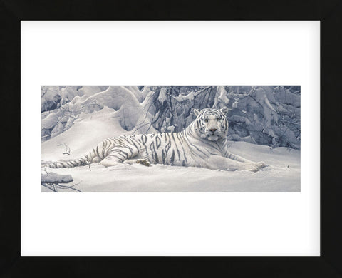 White Tiger  (Framed) -  Daniel Smith - McGaw Graphics