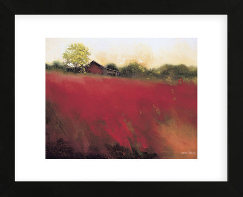 Red Land  (Framed) -  Thomas Stotts - McGaw Graphics