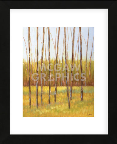 Tall Trees I (left) (Framed) -  Libby Smart - McGaw Graphics