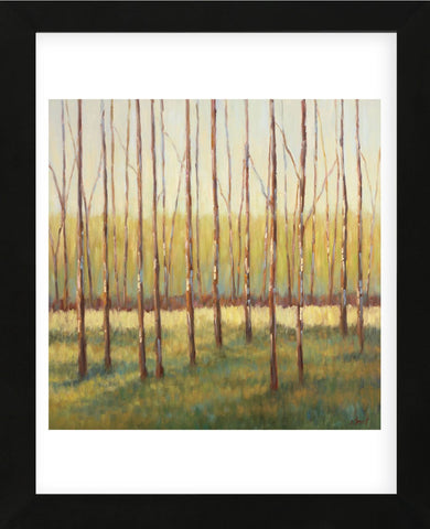 Grove of Trees (Framed) -  Libby Smart - McGaw Graphics