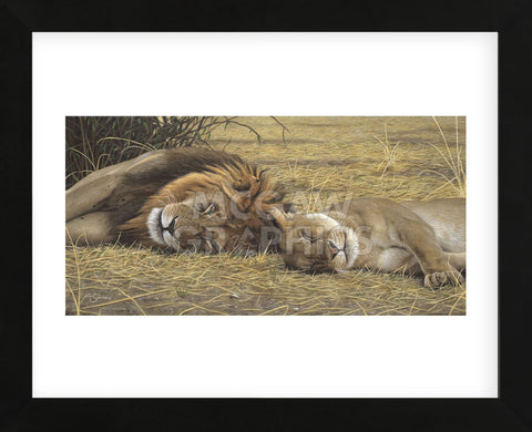 Lion and Lioness (Framed) -  Adam Smith - McGaw Graphics