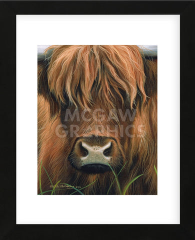 Cow Portrait (Framed) -  Sarah Stribbling - McGaw Graphics