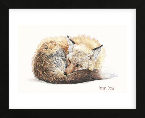 Snuggled Up (Framed) -  Lindsay Scott - McGaw Graphics