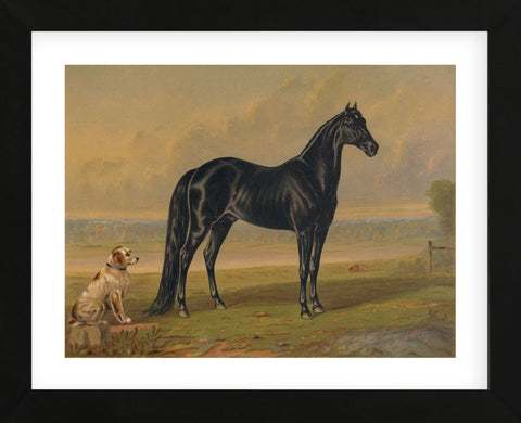 America's Renowned Stallions, c. 1876 I (Framed) -  Vintage Reproduction - McGaw Graphics