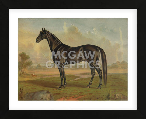 America's Renowned Stallions, c. 1876 II (Framed) -  Vintage Reproduction - McGaw Graphics