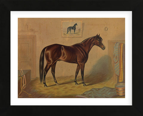 Vintage Reproduction - America's Renowned Stallions, c. 1876 III