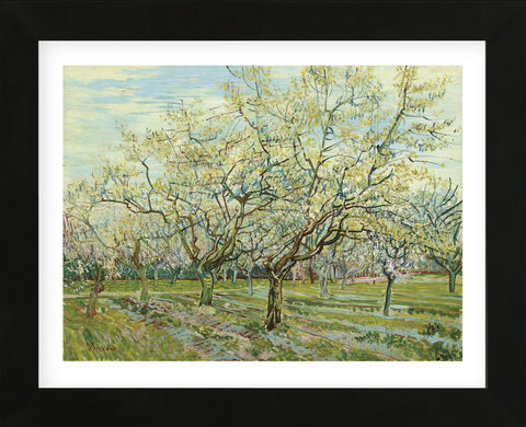 The White Orchard, 1888 (Framed) -  Vincent van Gogh - McGaw Graphics