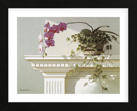 Mantelpiece Orchid (Framed) -  Zhen-Huan Lu - McGaw Graphics