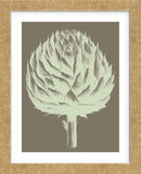 Artichoke 12 (Framed) -  Botanical Series - McGaw Graphics