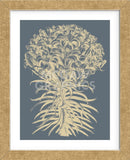 Lilies 2 (Framed) -  Botanical Series - McGaw Graphics