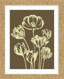 Tulip 4 (Framed) -  Botanical Series - McGaw Graphics