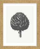 Artichoke (Ivory & Ink ) (Framed) -  Botanical Series - McGaw Graphics