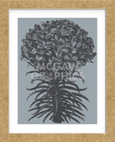 Lilies (Slate & Ink) (Framed) -  Botanical Series - McGaw Graphics