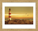 Pacific Sunset 5 (Framed) -  Carlos Casamayor - McGaw Graphics