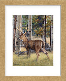 Fall Whitetail (Framed) -  Russell Cobane - McGaw Graphics