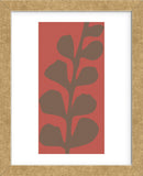 Maidenhair Coco Stem (single)  (Framed) -  Denise Duplock - McGaw Graphics