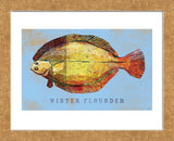 Winter Flounder  (Framed)