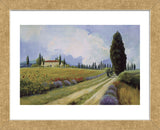 Holiday in Tuscany  (Framed) -  Carolyne Hawley - McGaw Graphics