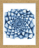 Blue Zinnia (Framed) -  Cathe Hendrick - McGaw Graphics